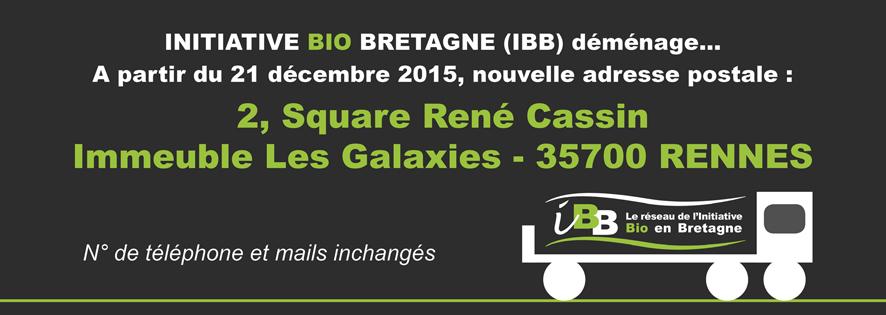 IBB-Carrousel-IBB-Demenage-Bandeau-bd