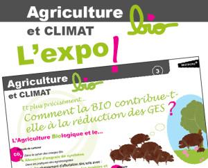 IBB-ExpoBioEtClimat2015-Carre