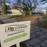 IBB-JFT-PPAM-2015-01