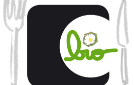 Logo-RC-Bio-AvecCouverts-Site