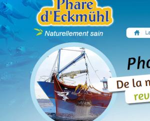 PharedEckmuhl-CaptureEcranNouveauSiteInternet-Logo-022015